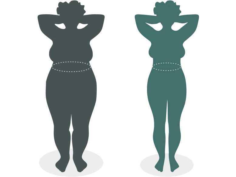 Overeating is not the primary cause of obesity, according to scientists, who point to more effective weight loss strategies.